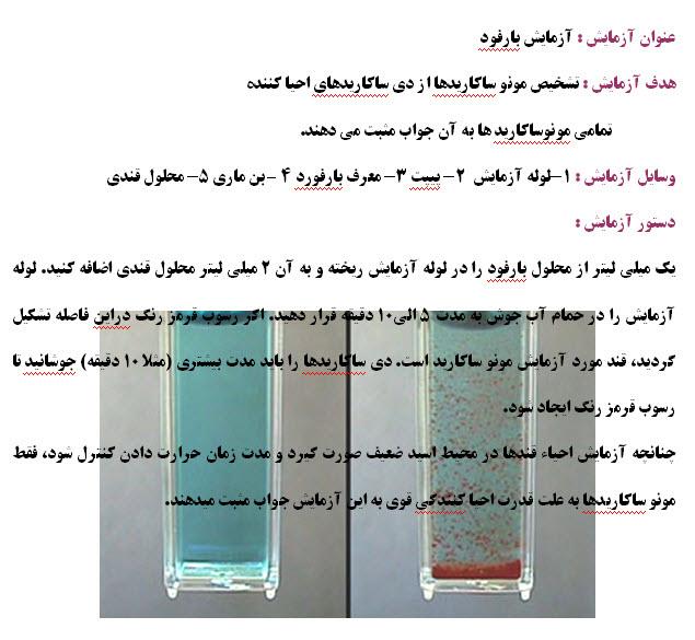 آزمایش بارفورد-آزمایشگاه زیست شناسی تبریز